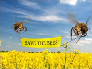 "abeille avec banderole ""save the bees"""